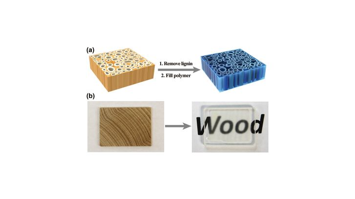 After the color is removed, polymers or epoxies can be injected to strengthen the wood. The result is stronger, transparent wood