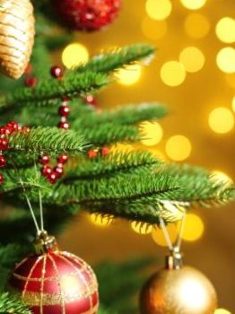 Christmas.The Stories Behind Our Christmas Traditions