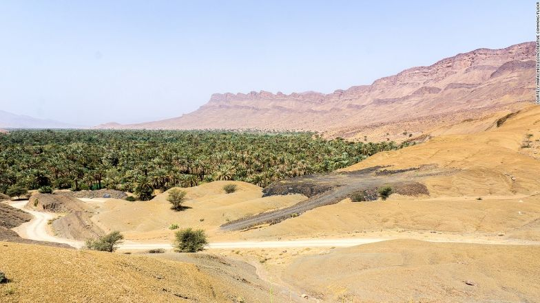 Never thought we'd say this, but date palms and kasbahs make a surprisingly good team.