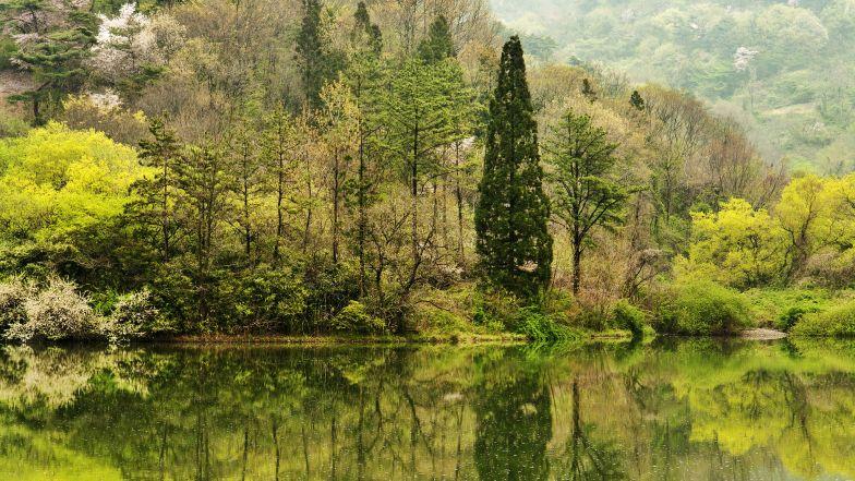 Spectacular scenes at Seryang-Je reservoir.